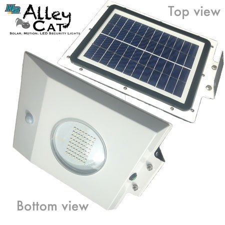 Alley Cat Solar Security Light