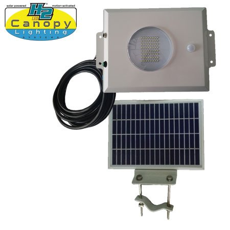 Canopy Solar Security Light