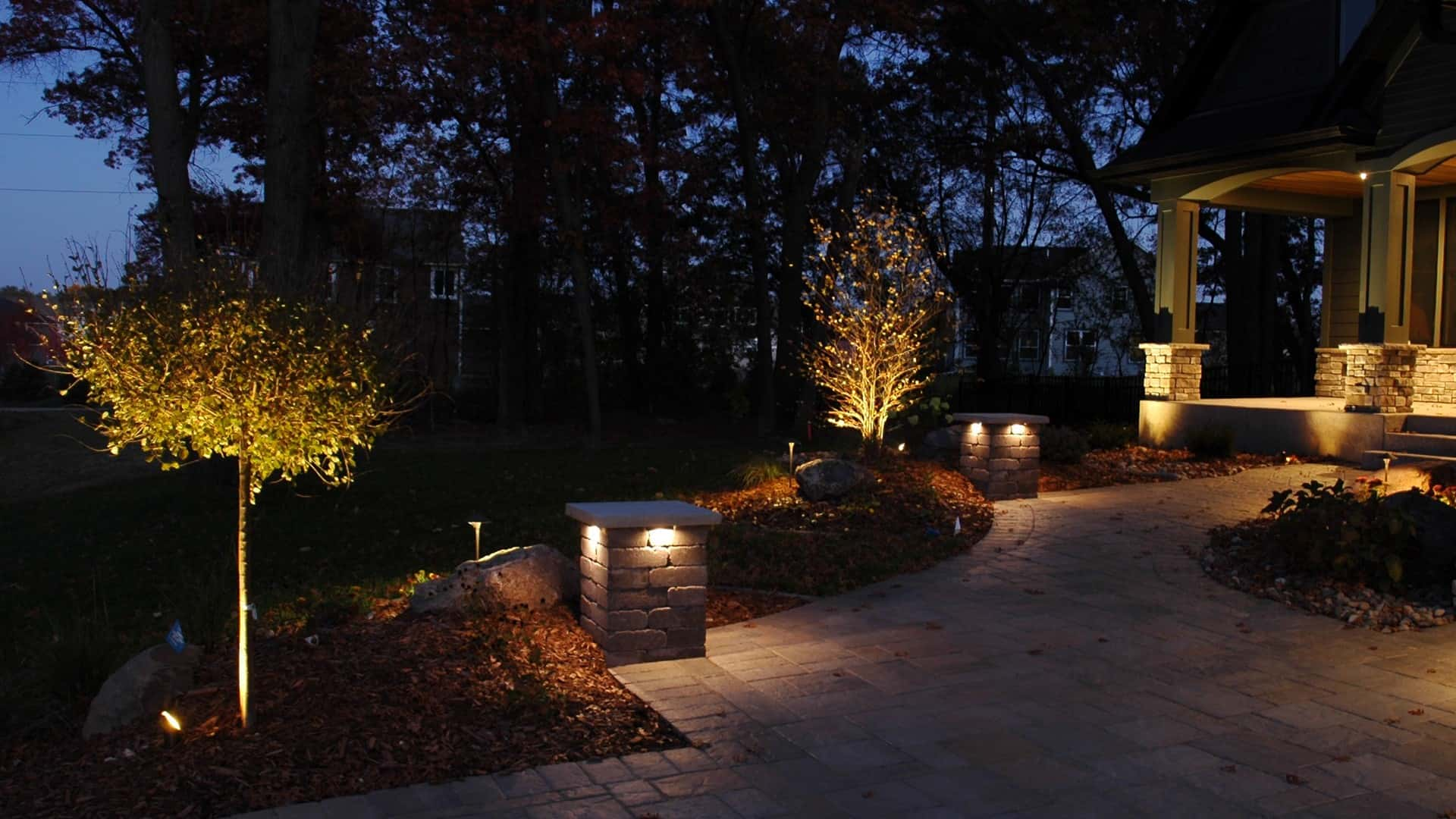 Outdoor space with tree uplighting